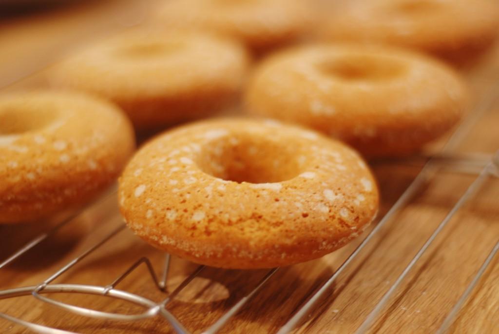 skoricova_donut